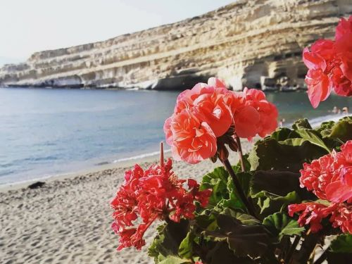 Summer 2020: Holidays in hotel in Matala, Crete!